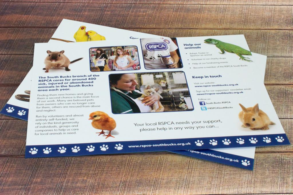RSPCA information leaflet
